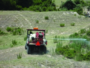 A two-person crew applies herbicides to control vegetation in a utility right-of-way. Bluebonnet will resume using herbicides this year in some of its rights-of-way.